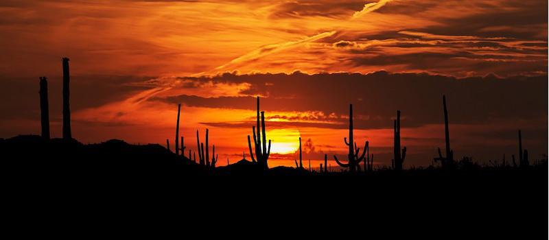 deserto di Sonora in Messico al tramonto
